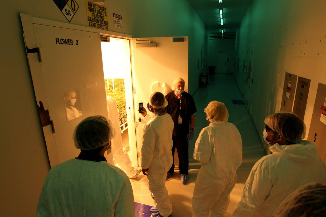 Jason Gully, chief operating officer of GreenMart of Nevada NLV LLC in North Las Vegas, top, gives a tour of his facility to New Jersey lawmakers and cannabis industry officials on a three-day mar ...