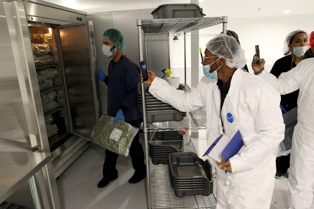 Lerone Jones of Green Garden Advisors gets a photo of fresh frozen batches during a tour GreenMart of Nevada NLV LLC in North Las Vegas, with New Jersey lawmakers and cannabis industry officials a ...