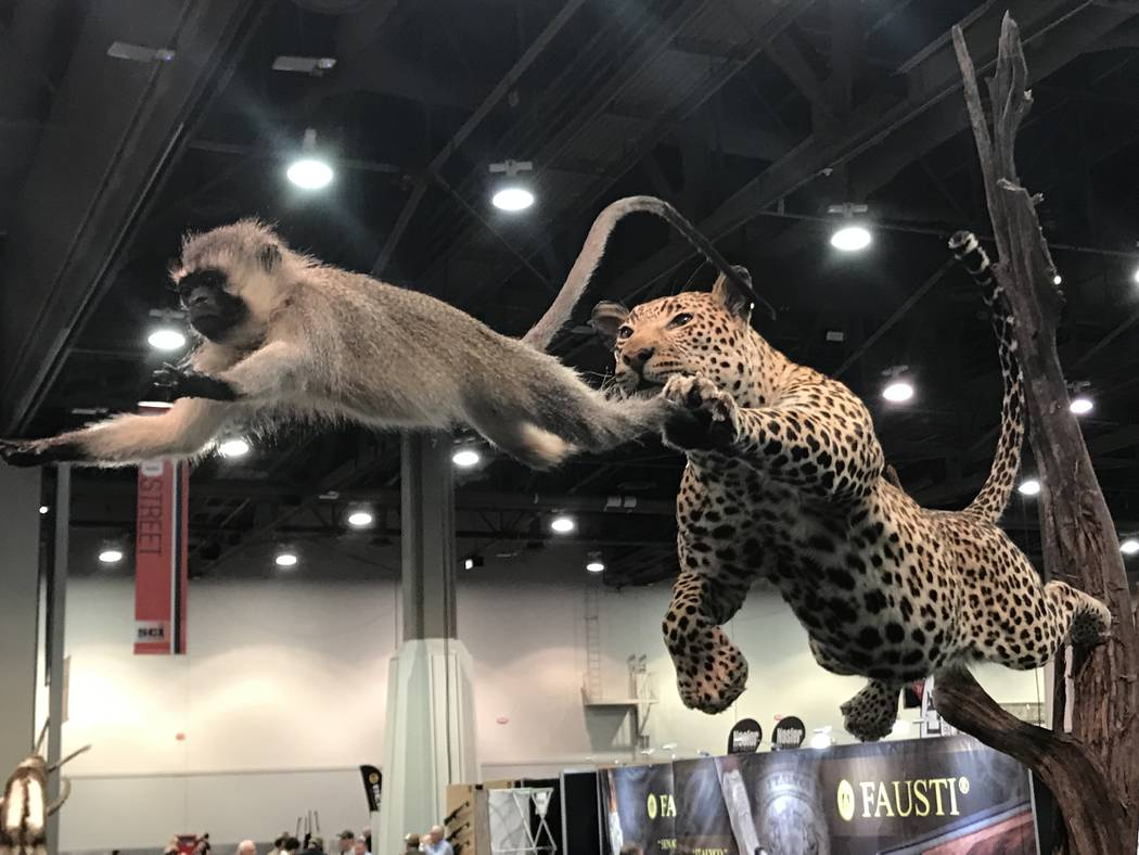 Taxidermy art is one of the highlights at the Safari Club International Hunters' Convention. (Doug Nielsen)