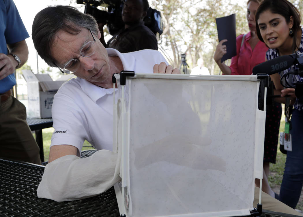 Bill Petrie, Director of Miami-Dade County Mosquito Control, places his hand inside a box containing Wolbachia-infected male mosquitoes, Thursday, Feb. 8, 2018, in South Miami, Fla. Thousands of b ...