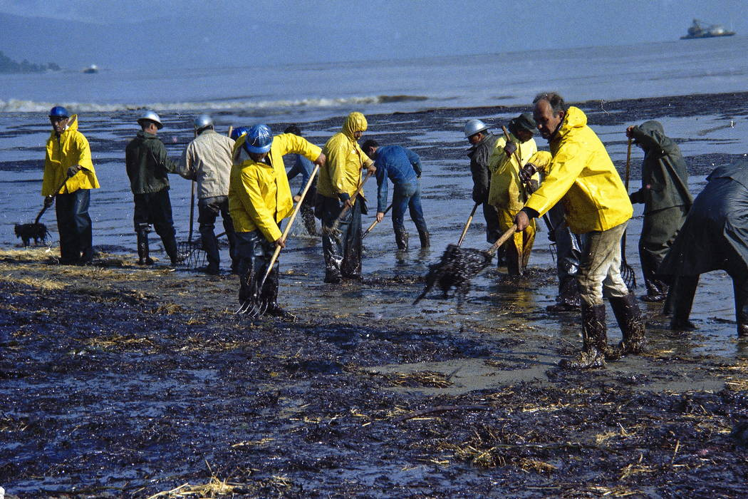 State forestry conservation crews made up of prison convicts clean up oil-soaked straw after an oil spill on the beach in Santa Barbara, Calif., in 1969. (AP Photo/Wally Fong, file)