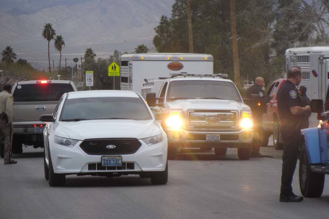 Las Vegas police teamed up with Las Vegas Animal Control to capture a runaway bull in the 1900 block of Ophir Street, near Martin Luther King Boulevard and Washington Avenue, early Friday morning, ...
