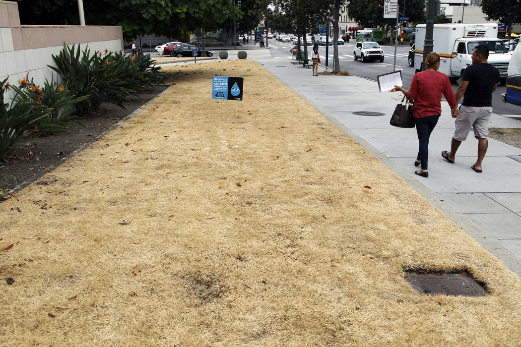 A dried-out lawn is seen at Los Angeles City Hall, with a sign explaining that irrigation has been shut off due to the ongoing drought in 2015. (AP Photo/Nick Ut, File)