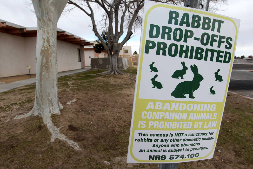 A sign prohibiting rabbit drop-offs at the State of Nevada West Charleston Campus Monday, Feb. 19, 2018. Rabbit rescue groups say they found many of the hundreds of domestic rabbits who live at th ...