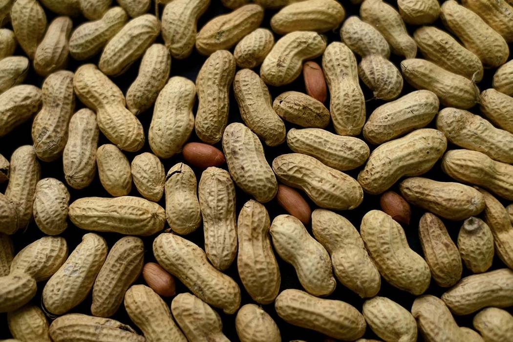 Aimmune's peanut allergy drug meets main goal, shares surge