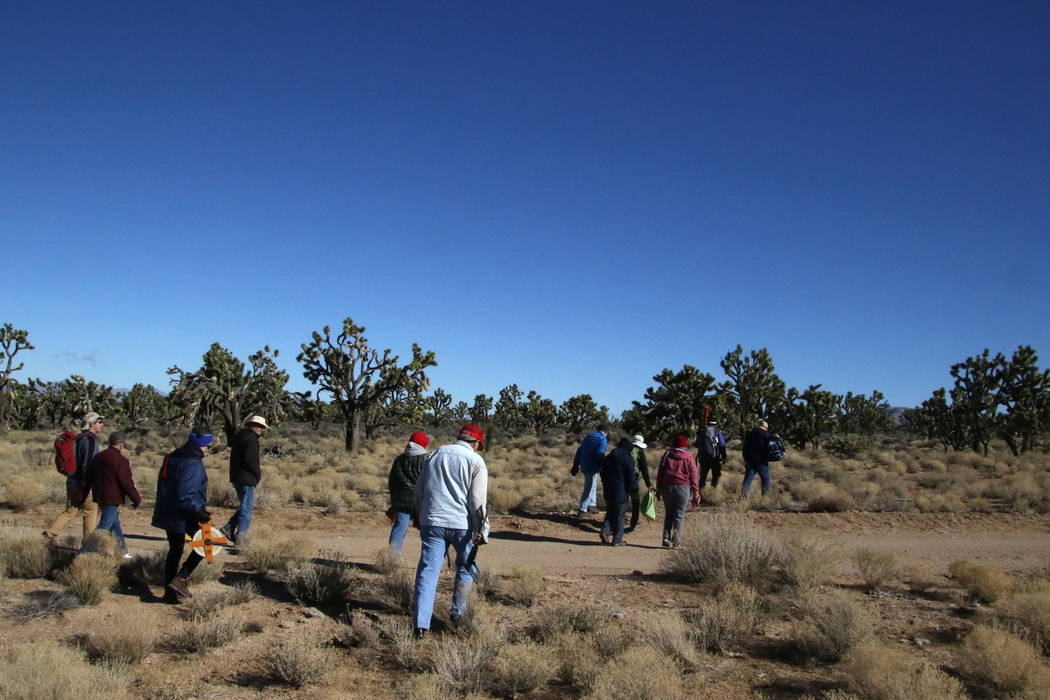 Researchers and volunteers hike into the Grapevine Mesa Joshua Tree forest to set up a scientific plot near Meadview, Arizona, Tuesday, Feb. 20, 2018. (Henry Brean/Las Vegas Review-Journal)