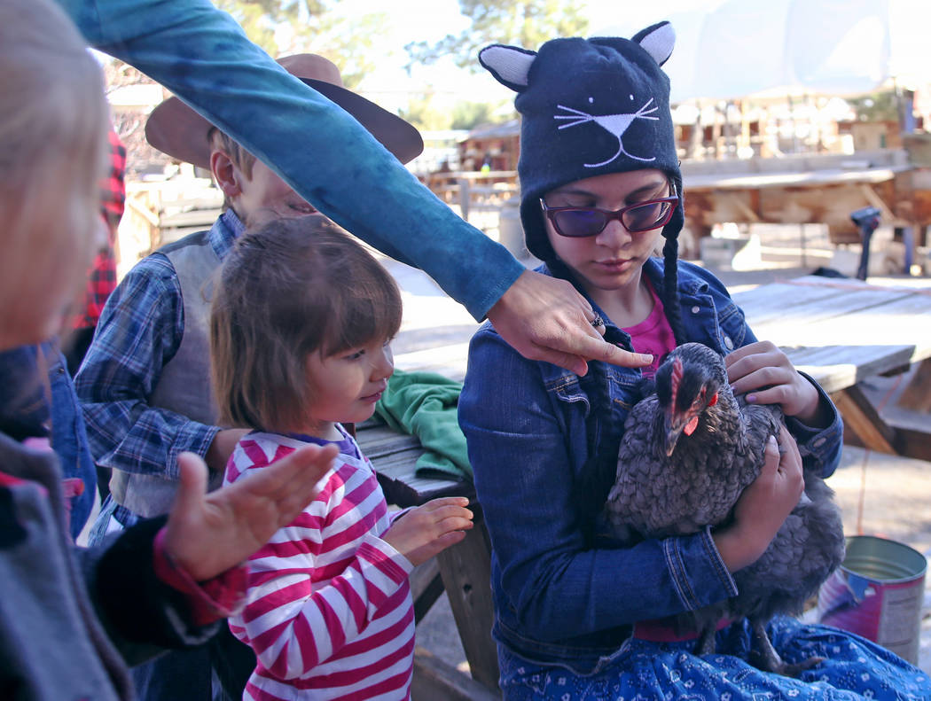 Maresa Lorr points at a chicken being held by Cristabel Guthrie, 12, as Regina Lorr, 3, watches at J.R. Pony Farm in Las Vegas, Wednesday, Feb. 28, 2018. The city of Las Vegas wants to annex 872 a ...