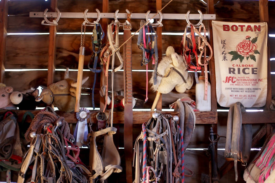 A nearly seventy-year-old barn with supplies and horse tack at the J.R. Pony Farm in Las Vegas, Wednesday, Feb. 28, 2018. The city of Las Vegas wants to annex 872 acres of land that would affect   ...