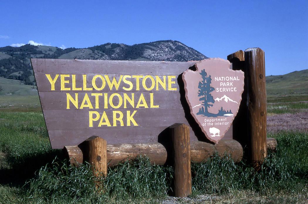 Yellowstone National Park (Courtesy/nps.com)