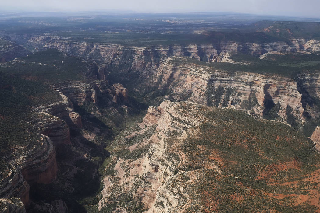 Arch Canyon, within Bears Ears National Monument in Utah. (Francisco Kjolseth/The Salt Lake Tribune via AP)
