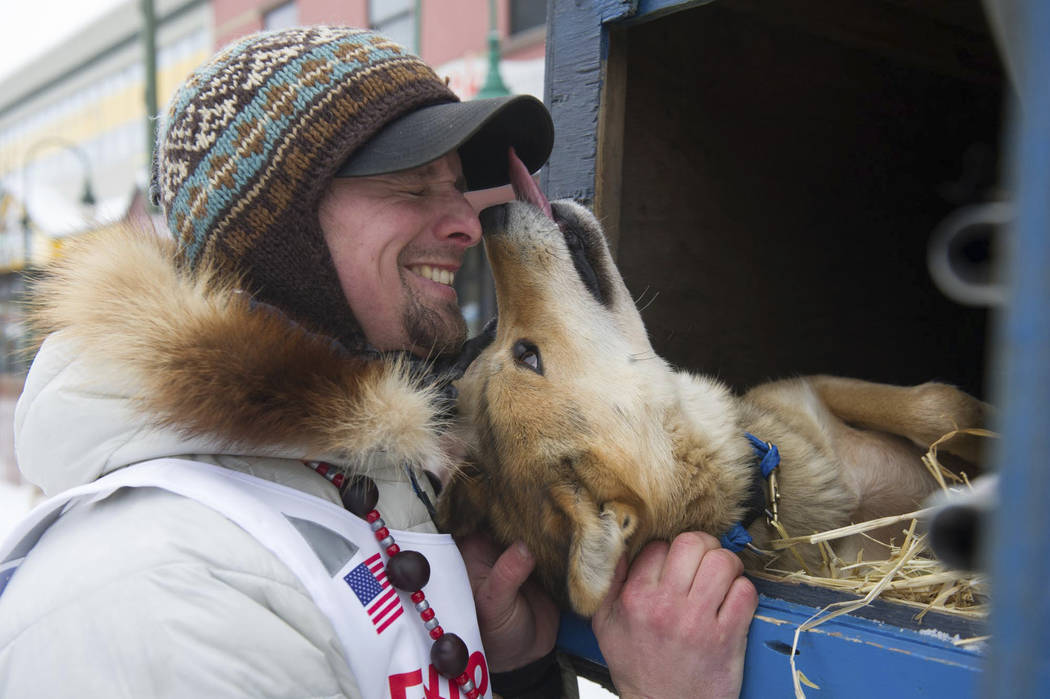 Rookie musher Matt Failor, of Willow, Alaska, gets friendly with Pantera, a female dog in his team, prior to the ceremonial start of the Iditarod Trail Sled Dog Race, Saturday, March 3, 2018, in A ...