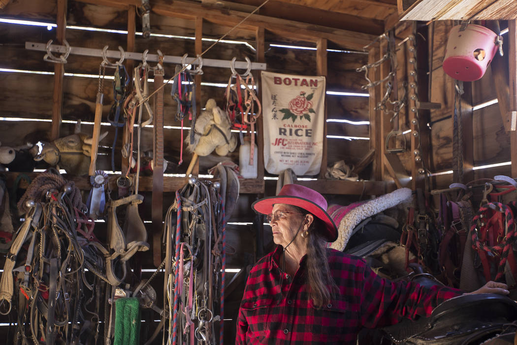 Judith Roberts, co-owner of the J.R. Pony Farm at her farm in Las Vegas, Wednesday, Feb. 28, 2018. The cit ...