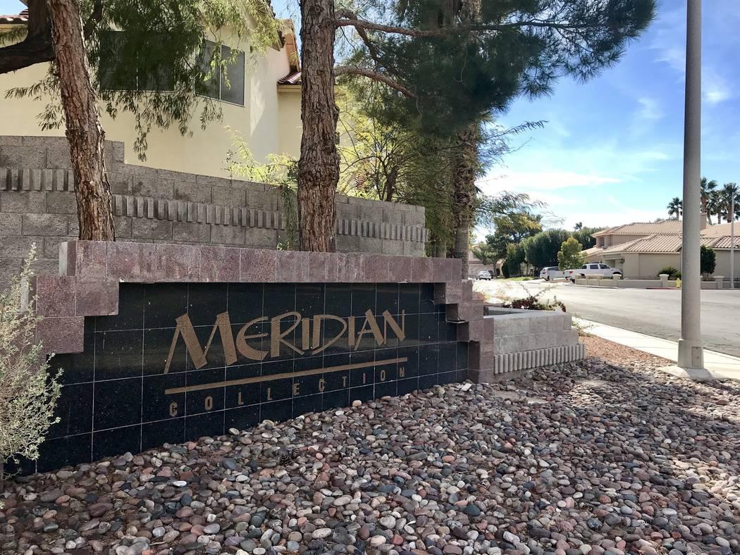 meridianas magical investigations
