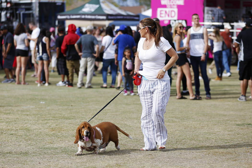Angela Alvarez and her 4-year-old basset hound named Matilda attend the first Tacos and Tamales Festival, organized by the Clark County Parks and Recreation, at Sunset Park in Las Vegas on Saturda ...