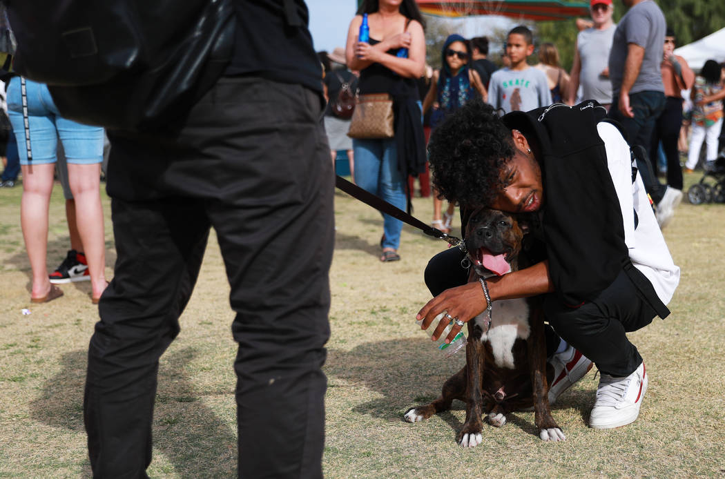Kainoa Bailey, 22, rests his head on Jason Eng's dog, a 4-year-old boxer named Juju, during the first Tacos and Tamales Festival, organized by the Clark County Parks and Recreation, at Sunset Park ...