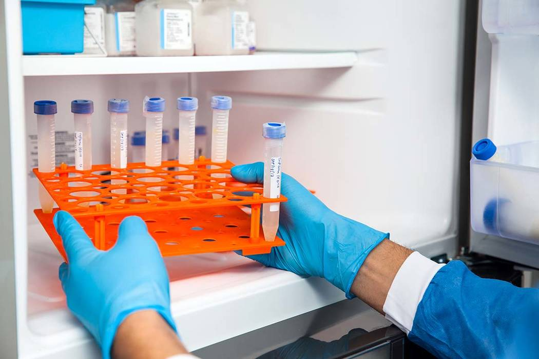 2000 frozen eggs and embryos possibly 'compromised' after fertility clinic temperature malfunction