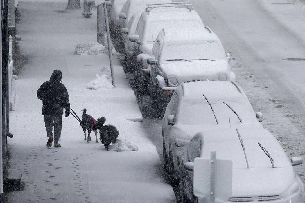 A person walks dogs on Marginal Street in Boston, Tuesday, March 13, 2018. Boston finds itself in the bullseye of the third nor'easter in two weeks. (Michael Dwyer/AP)
