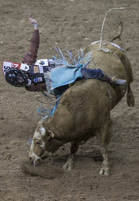Garrett Smith hangs on to Little Big Man during the National Finals Rodeo at the Thomas & Mack Center on Wednesday, Dec. 7, 2016, in Las Vegas. Benjamin Hager/Las Vegas Review-Journal