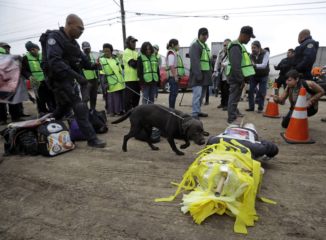 Police bring a bomb sniffing dog to inspect a piñata that protesters brought to an anti-Trump rally on Tuesday, March 13, 2018, in Tijuana, Mexico. President Trump is scheduled to visit the s ...