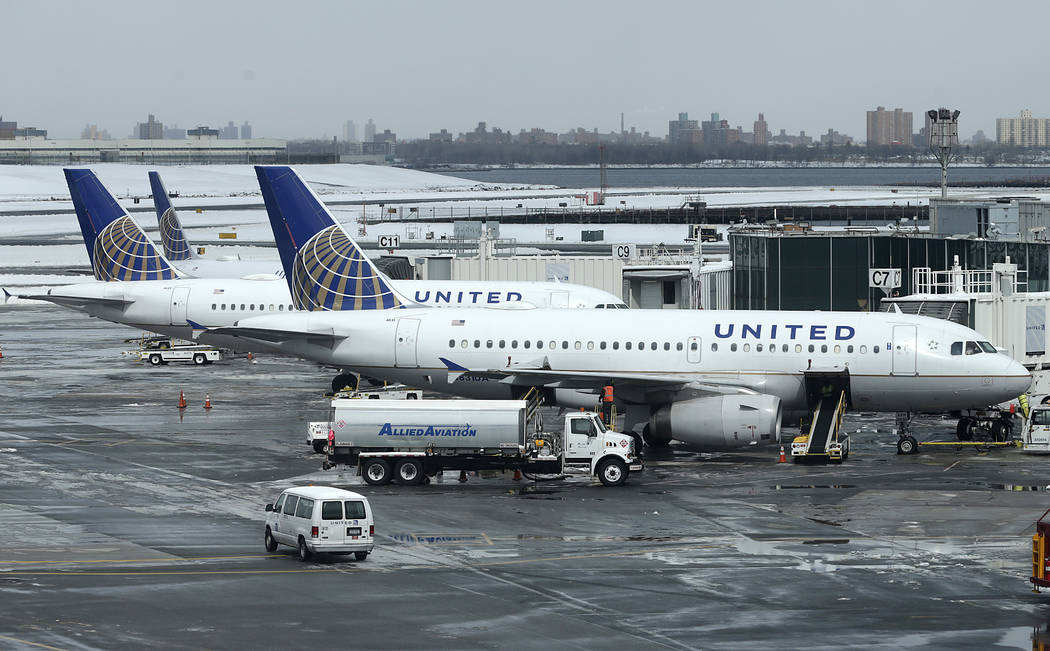 A United Airlines jets sit on the tarmac at LaGuardia Airport in New York. A dog died on a United Airlines plane after a flight attendant ordered its owner to put the animal in the plane's overhea ...