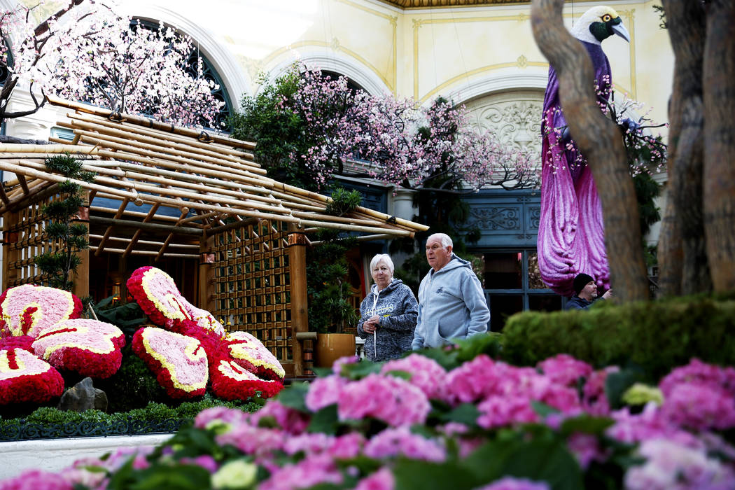 Helene Lanthier and Yvon Fugere look at the new spring display at the Bellagio Conservatory in Las Vegas on Thursday, March 15, 2018. Andrea Cornejo Las Vegas Review-Journal @DreaCornejo
