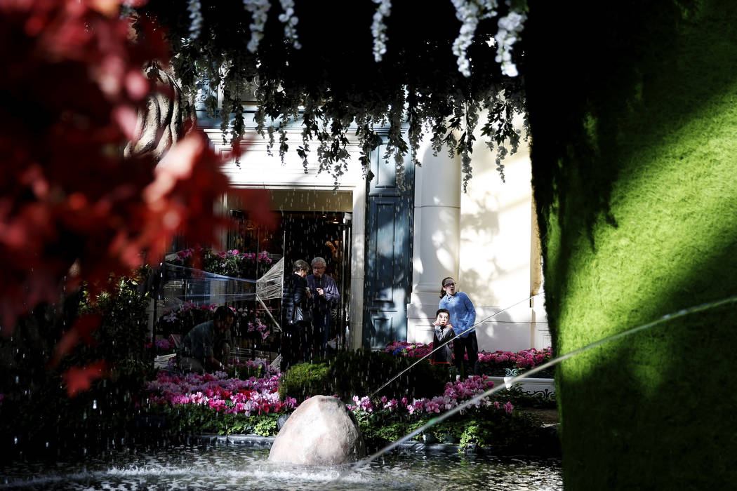 Visitors look at the new spring display at the Bellagio Conservatory in Las Vegas on Thursday, March 15, 2018. Andrea Cornejo Las Vegas Review-Journal @DreaCornejo