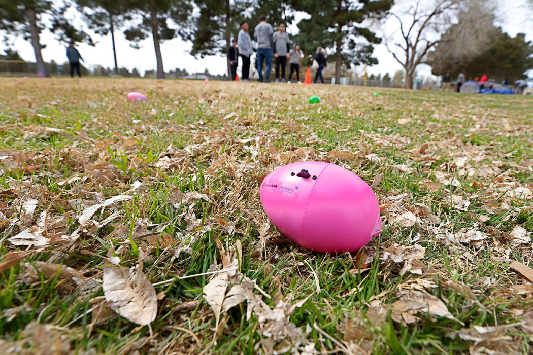 Beeping eggs are placed before the Beepin' Egg Hunt at Sunset Park in Las Vegas, Saturday, March 24, 2018. Nevada Blind Children's Foundation hosted the egg hunt for visually impaired children and ...