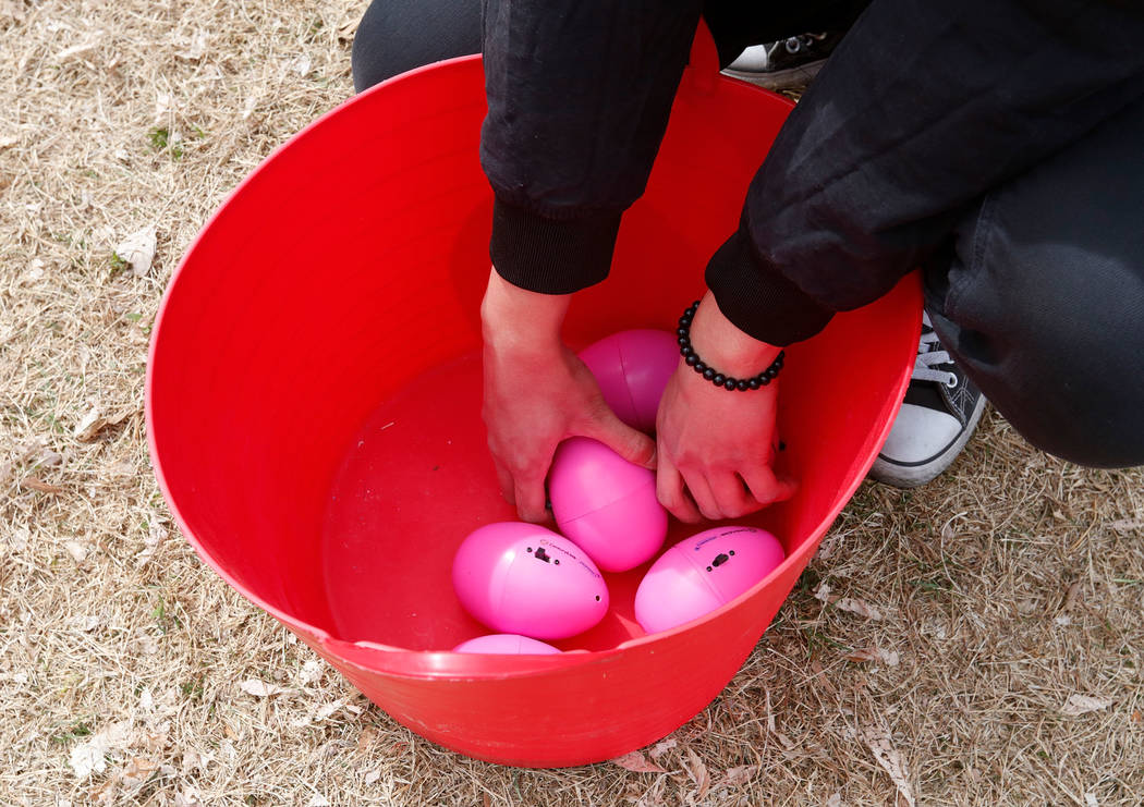 Beeping eggs are seen in preparation for the Beepin' Egg Hunt at Sunset Park in Las Vegas, Saturday, March 24, 2018. Nevada Blind Children's Foundation hosted the egg hunt for visually impaired ch ...