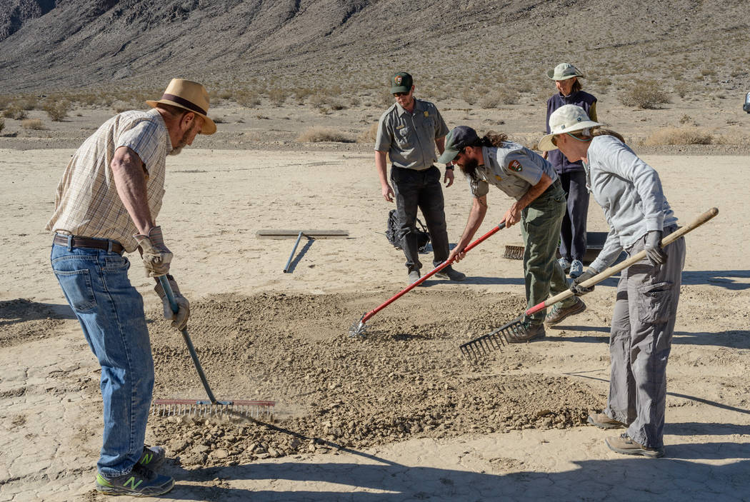 "Volunteers use rakes to erase tire tracks from Racetrack Playa, a dry lake in Death Valley National Park famous for its mysterious ""moving"" stones but off limits to vehicles. National Park Service"