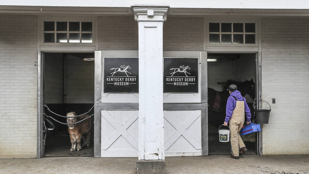 "Kentucky Derby Museum equine manager Alison Knight goes into the stall of thoroughbred Populist Politics, one of two horses at the museum in Louisville, Ky., Monday, March 5, 2018. ""Poppy's"" stabl ..."