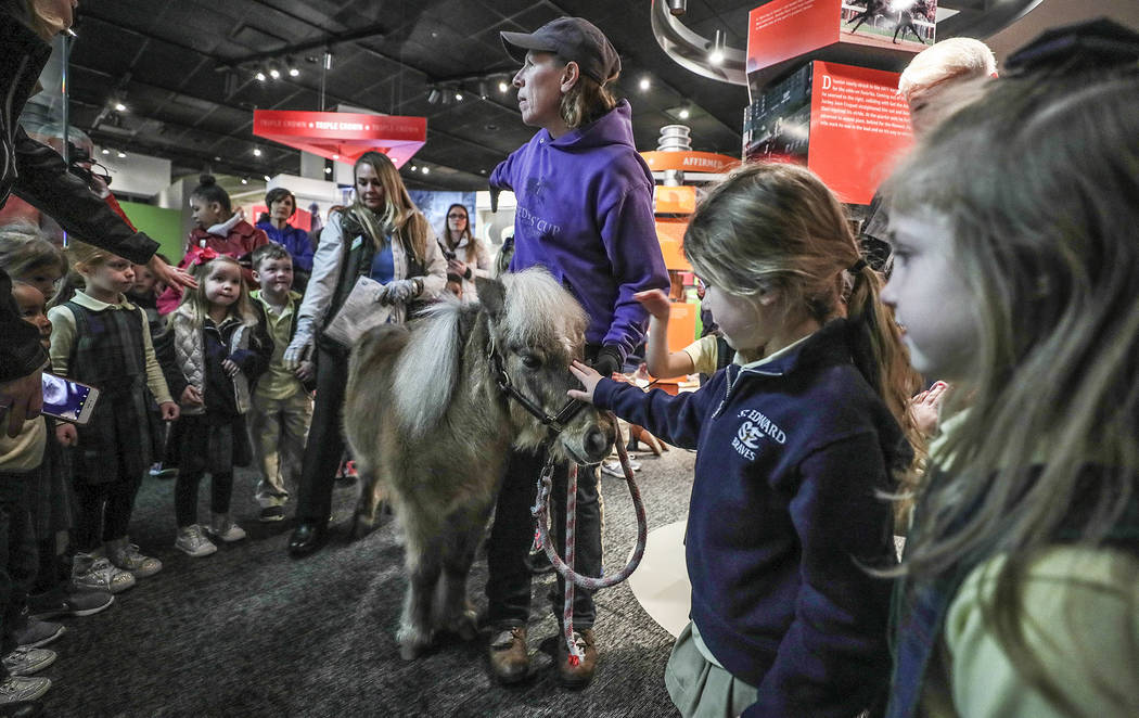 Students from St. Edward's line the way as Kentucky Derby Museum equine manager Alison Knight leads Winston, a miniature horse who has been a resident of the museum for 22 years, on a lap of the m ...