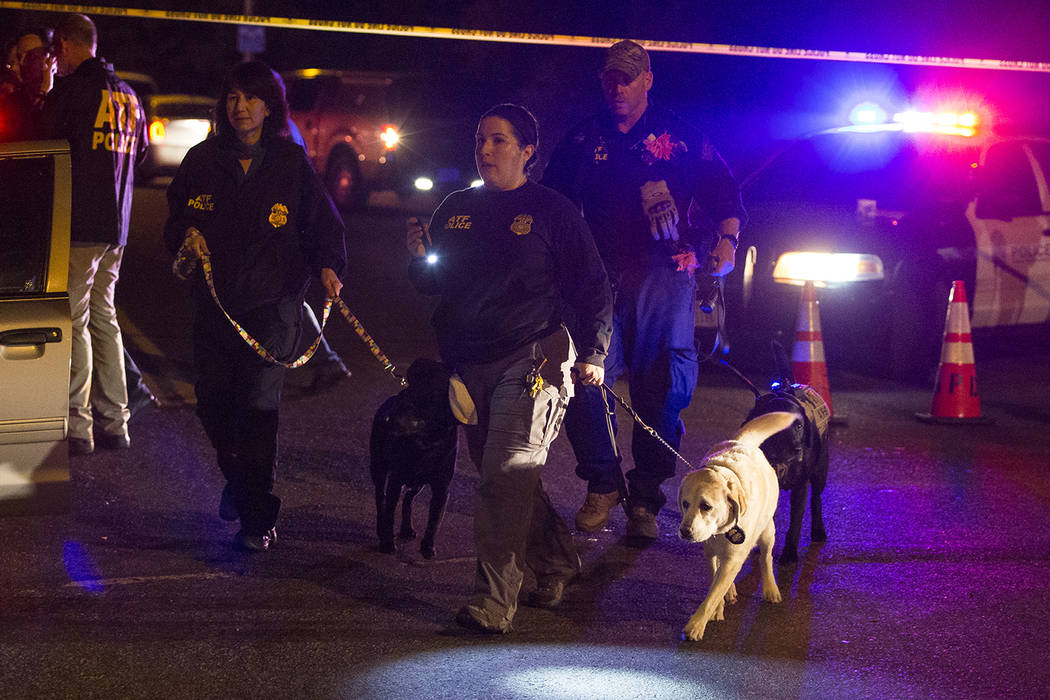 Police dogs and their handlers deploy at the scene of an explosion in southwest Austin, Texas, Sunday, March 18, 2018. (Nick Wagner/Austin American-Statesman via AP)