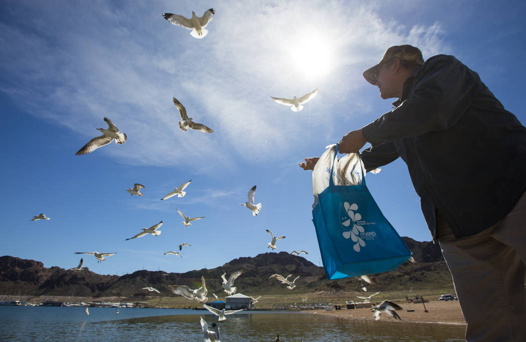 Henderson resident Byron Vasquez feeds seagulls and fish in the Hemenway Harbor area of Lake Mead National Recreation Area on Monday, March 19, 2018. Vasquez and his wife Rosemarie visit every wee ...