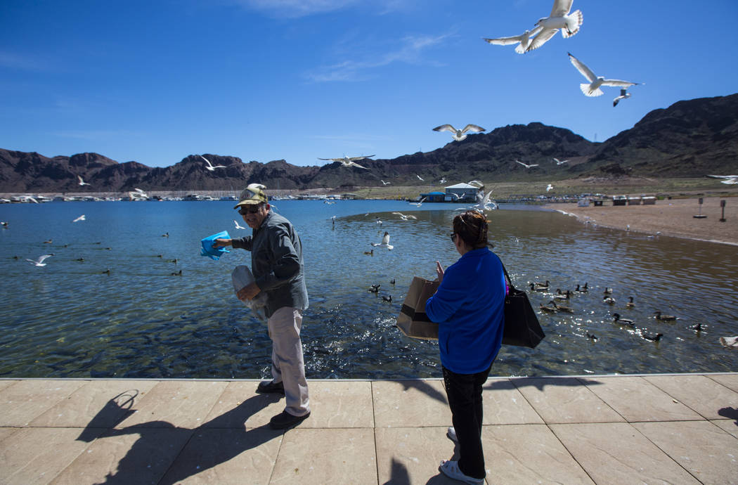 Henderson residents Byron Vasquez, left, and his wife Rosemarie feed seagulls and fish in the Hemenway Harbor area of Lake Mead National Recreation Area on Monday, March 19, 2018. The couple visit ...