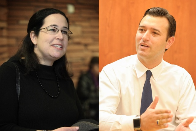 Assembly District 29 Democrat Lesley Cohen, left, hopes to survive a primary challenge to get a November rematch against former Assemblyman Stephen Silberkraus. The district is one of several key  ...