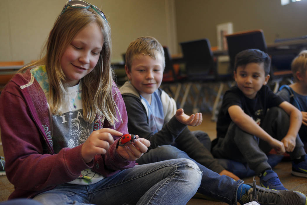 Georgette Dokken, 11, from left, holds a fake ladybug before passing it to her brother Ellis Dokken, 7, and Jesse Camacho, 6, as part of the Young Explorers program at the Clark County Wetlands Pa ...