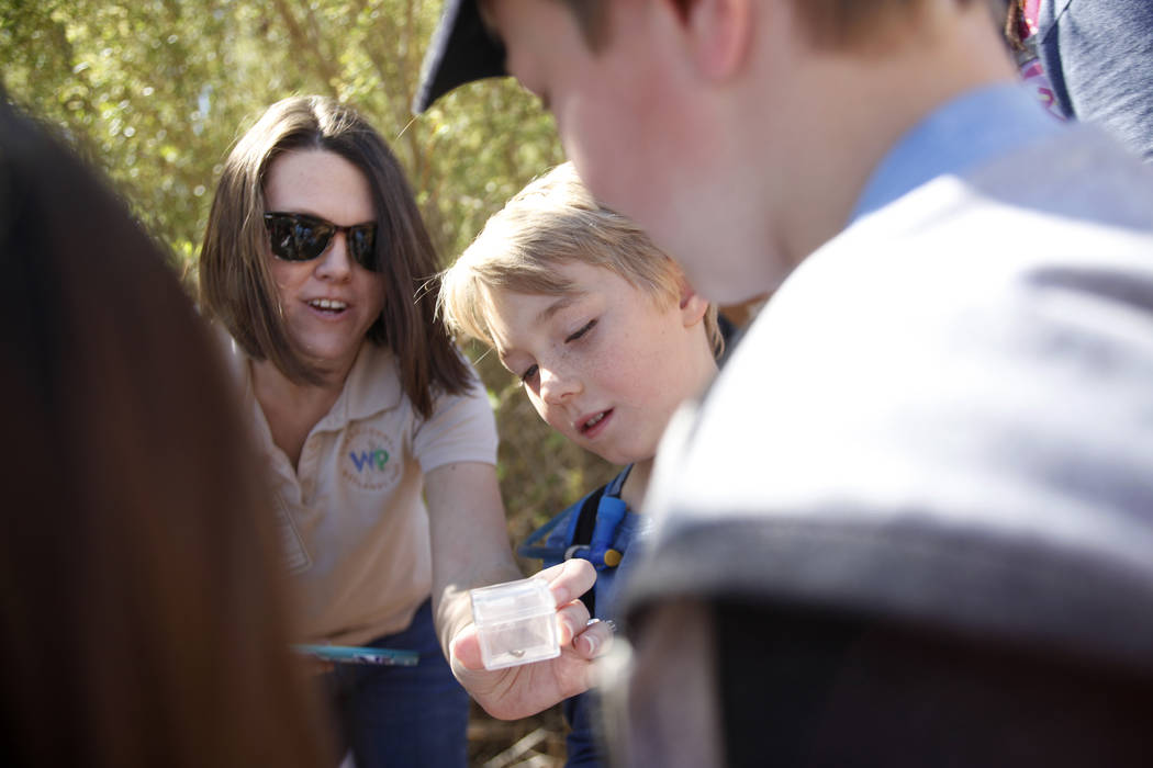 Recreation Assistant Alice Hulslander shows a ladybug to Bodhi Brouillet, 7, center, and Ellis Dokken, 7, right, as part of the Young Explorers program at the Clark County Wetlands Park in Las Veg ...