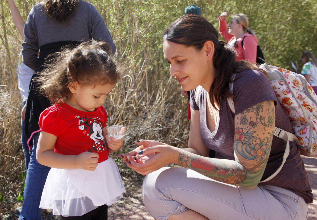 Zoe Ramirez shows her daughter Allyson Ramirez, 2, a captured ladybug during the Young Explorers program at the Clark County Wetlands Park in Las Vegas, Sunday, March 25, 2018. (Rachel Aston Las V ...