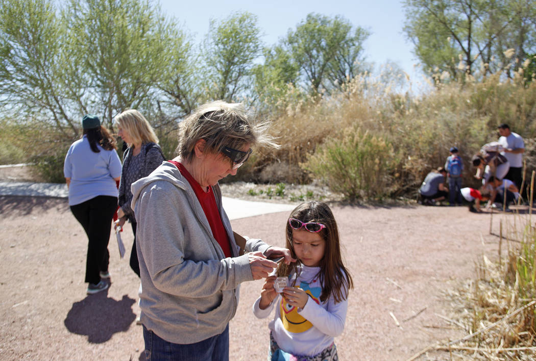 Robena Gore takes a photo of a captured ladybug her granddaughter Sophia Barnes, 6, holds during the Young Explorers program at the Clark County Wetlands Park in Las Vegas, Sunday, March 25, 2018. ...