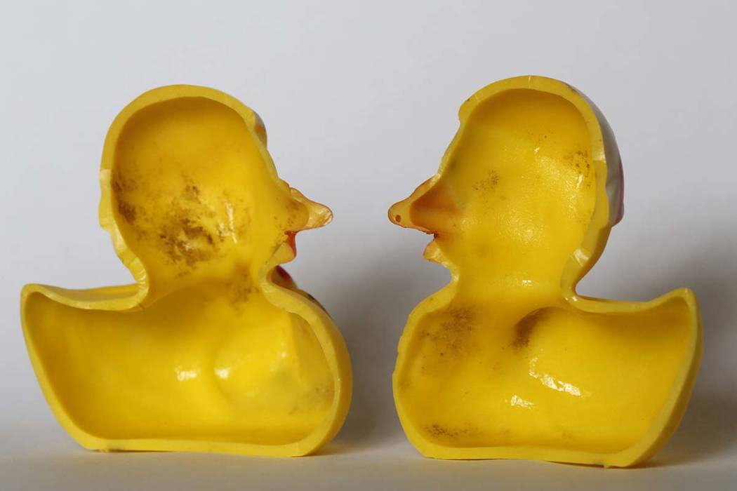 Your rubber duck is so dirty it could kill you