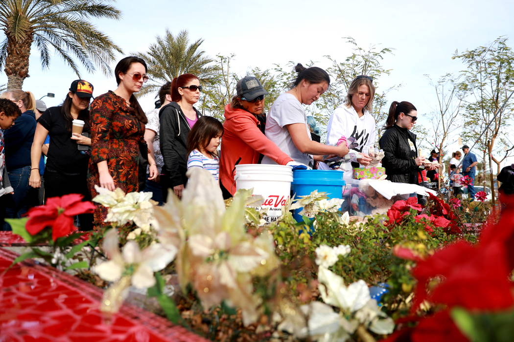 Volunteers pick up gloves to help plant 10,000 daffodils at the Healing Garden in Las Vegas on Saturday, Feb. 10, 2018. Andrea Cornejo Las Vegas Review-Journal @DreaCornejo