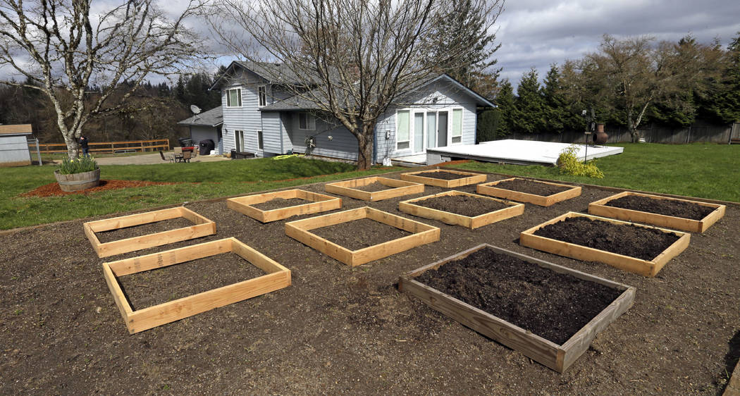 This photo taken Wednesday, March 28, 2018, shows raised beds at the house in Woodland, Wash., where the Hart Family lived.  (AP Photo/Don Ryan)