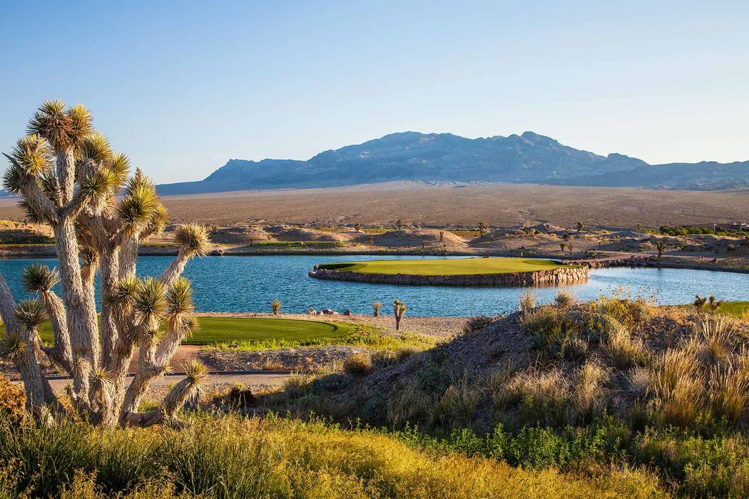 The 15th hole at the Wolf at Las Vegas Paiute Golf Resort features a stunning island green. The course was recently ranked No. 1 in Nevada on GolfAdvisor.com and 34th nationally. Courtesy LV Paiut ...