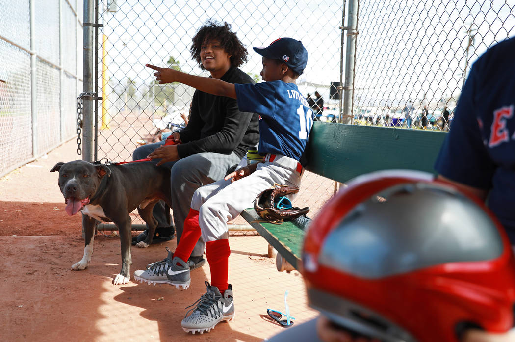 Antuan Smith and his pitbull named Pappa sit next to Jamarion Lewis, right, during the Bolden Little League's Opening Day at Doolittle Field in Las Vegas on Saturday, April 7, 2018. Andrea Cornejo ...
