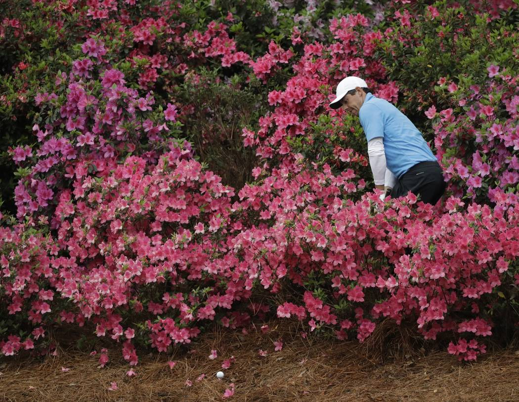 Rory McIlroy, of Northern Ireland, looks for his ball in the azaleas on the 13th hole during the third round at the Masters golf tournament Saturday, April 7, 2018, in Augusta, Ga. (AP Photo/David ...
