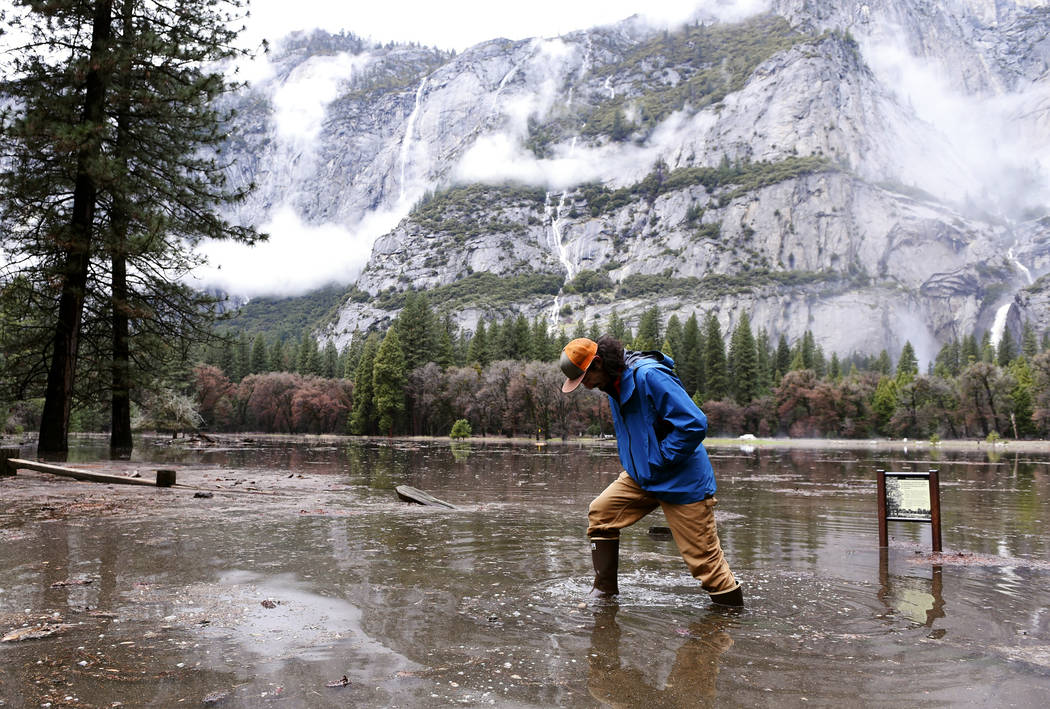 Kevin Kimo Laughlin, a maintenance worker for Aramark, wades back to dry ground as the Merced River rises due to rain in Yosemite National Park's Yosemite Valley on Saturday, April 7, 2018. (Eric  ...