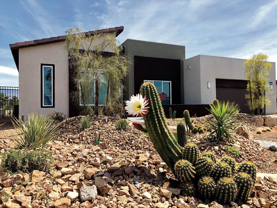 Cactus blooms in front of Plan Seven at Topaz in Ovation, an age-qualified community at Mountain Falls in Pahrump. (William Lyon Homes)