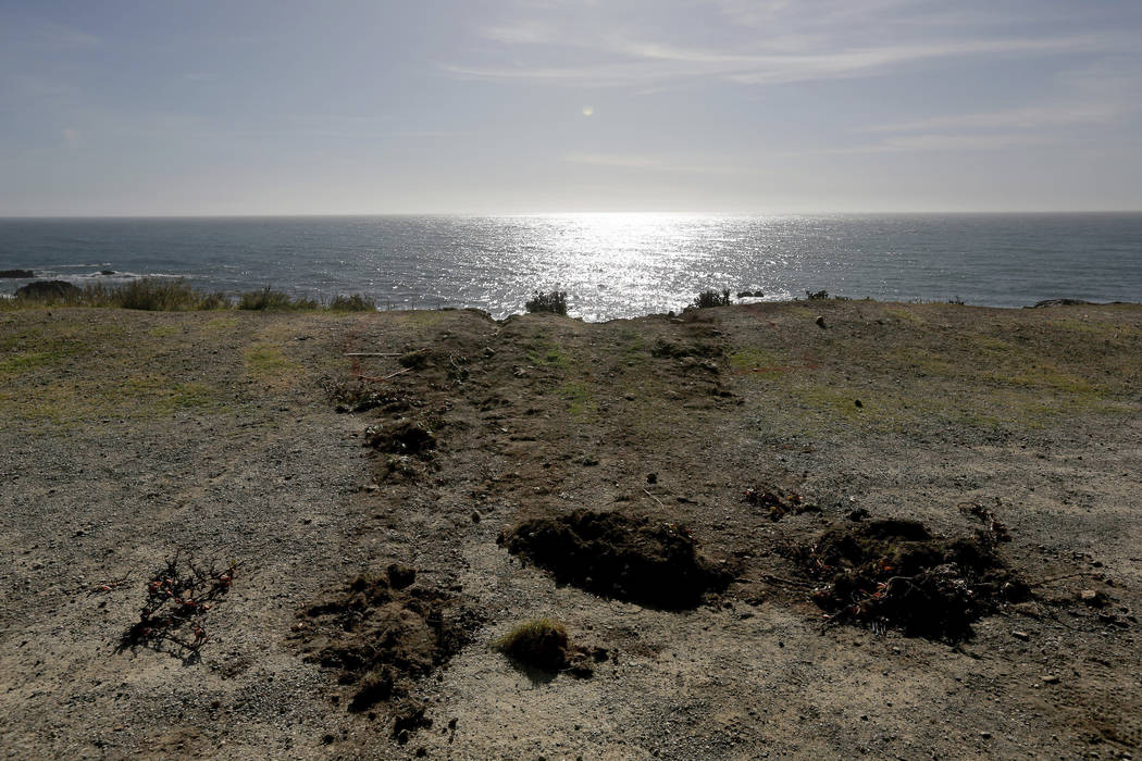 Tracks lead away from the edge of the cliff Wednesday, March 28, 2018, where the SUV of Jennifer and Sarah Hart went off the Pacific Coast Highway near Westport, Calif., on Monday. (Alvin Jornada/ ...
