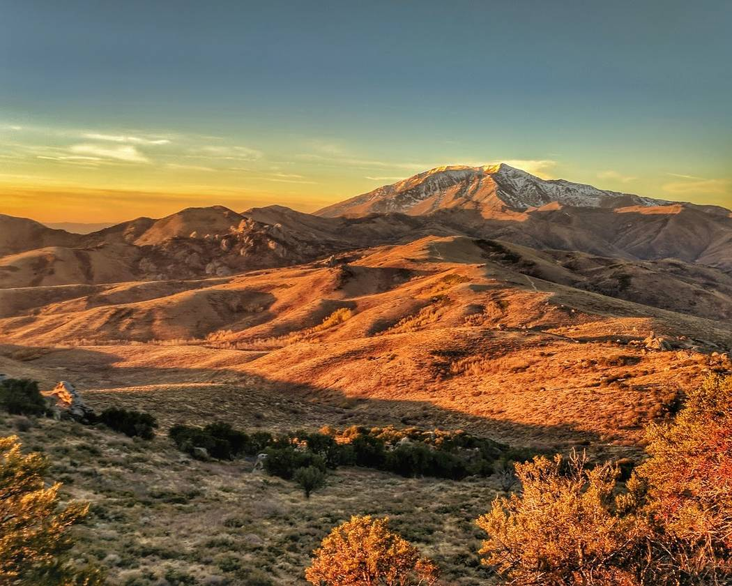 Orange sunlight bathes a patch of the Ruby Mountains currently being evaluated for possible lease to oil and gas developers. Patrick Donnelly/Center for Biological Diversity