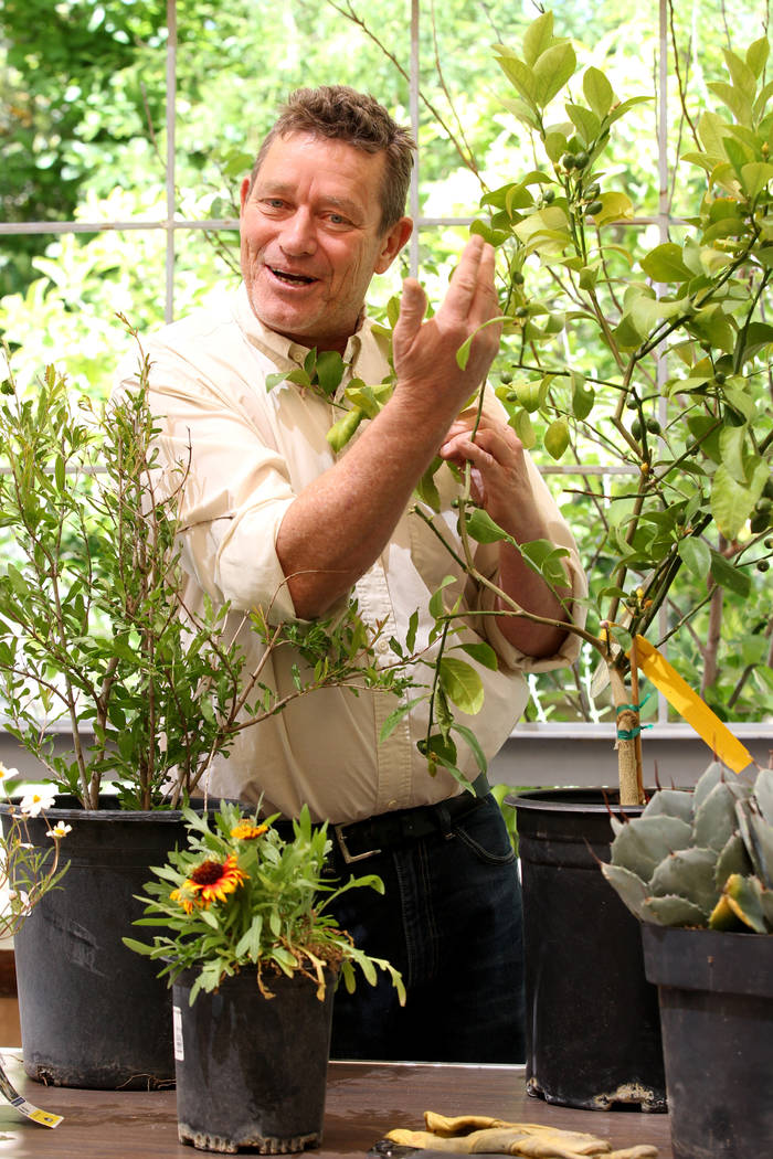 Norm Schilling, host of KNPR's Desert Bloom talks about plants that thrive in the desert during a news conference Thursday, April 19, 2018, announcing plans for the inaugural 1Farm Local Food Farm ...
